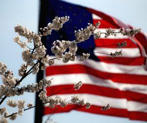 H1B on backburner as Biden focuses on 470,000 pending US immigrant visa cases