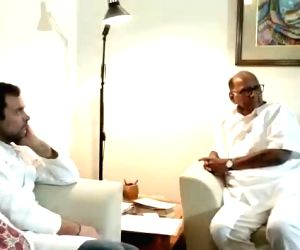 NCP chief Sharad Pawar during a meeting with Congress President Rahul Gandhi in New Delhi on May 30, 2019.