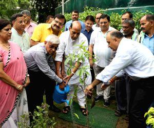 NDMC plantation campaign- Rajnath Singh