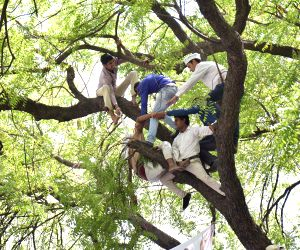 Farmer attempts suicide at AAP rally