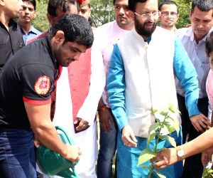 Prakash Javadekar, Virat Kohli, Sushil Kumar plant sapling on World Environment Day