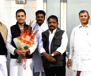 Newly appointed Andhra Congress President meets Rahul Gandhi