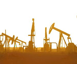 US oil, gas exports to India to continue: Price