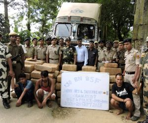 Dhalai (Tripura): Police, BSF seize 957 Kgs of marijuana from Ambassa