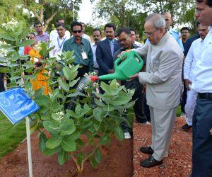 President Mukherjee inaugurate 'Nakshatra Vatika'