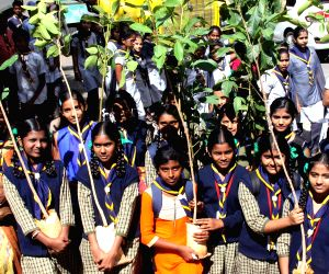 World Environment Day celebrations