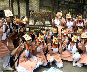 Students participate in Tiger awareness rally