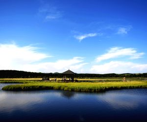 CHINA-HEBEI-CHENGDE-NATIONAL FOREST PARK