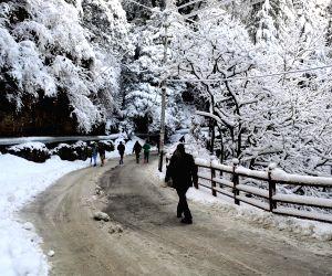 File Photo: Snowfall