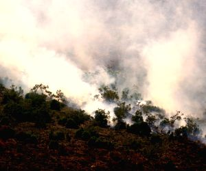 INDONESIA-SOUTH SUMATRA-FOREST FIRE