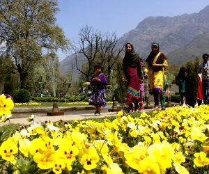Nishat Bagh opened for general public