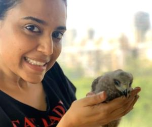 Swara Bhasker rescues black kite, names it 'Changez'