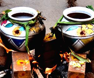 sweet-pongal-being-cooked-inside-earthen-pots-on