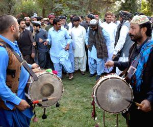 Taliban's rise masks Pashtun assertion in Af-Pak