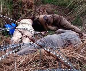 BSF guns down Pakistani intruders