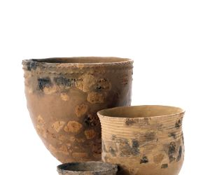 Free Photo: Origins of pottery traced to Japan: Study