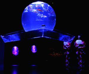 A press preview of the exhibition Eco Edo Nihombashi Art Aquarium 2014 in Tokyo