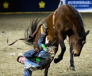 CANADA-TORONTO-ROYAL HORSE SHOW-RODEO