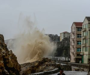 CHINA ZHEJIANG TYPHOON CHAN HOM