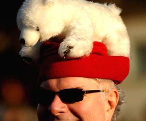 CANADA-VANCOUVER-POLAR BEAR DIP