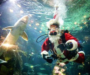 CANADA VANCOUVER AQUARIUM CHRISTMAS