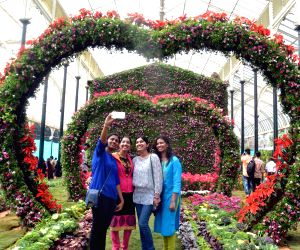 Annual Republic Day National Flower Festival 2016 -  inauguration