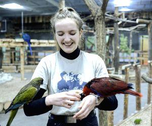 Poland-warsaw-parrot Academy