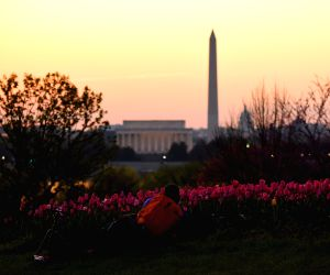 U.S. WASHINGTON D.C. SUNRISE