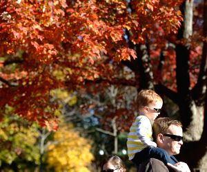 Washington D.C. (US): Visitors enjoy the fall foliage