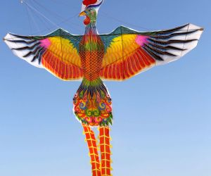Kite flying contest in Weifang