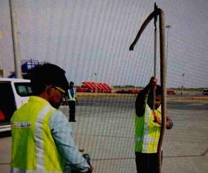 Snake at Hyderabad airport