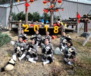 CHINA-SICHUAN-GIANT PANDA-SPRING FESTIVAL