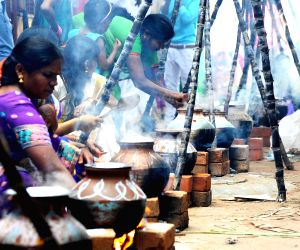 women-celebrate-pongal-in-bengaluru-on-jan