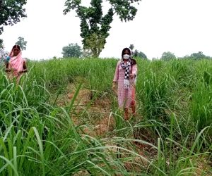 Women to have ownership of house in rural UP