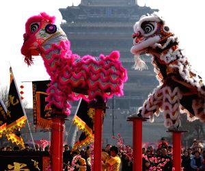 CHINA SHANXI YUNCHENG SPRING FESTIVAL