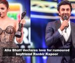 64th Vimal Elaichi Filmfare Awards 2019: Alia Bhatt says 'I love you' to Ranbir Kapoor