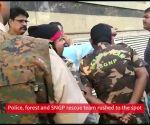 Maharashtra: Leopard enters Korrum Mall in Thane