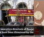 Nirav Modi case: Centre dismisses two executive directors of PNB