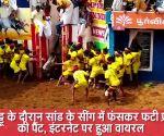 जल्लीकट्टू के दौरान सांड के सींग में फंसकर फटी प्रतिभागी की पैंट, इंटरनेट पर हुआ वायरल