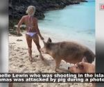 Popular Venezuelan model attacked by wild pig during photoshoot