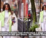 Priyanka Chopra makes a style statement with her pet Diana Chopra