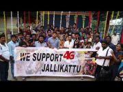 4G Movie Team Support To Jallikattu