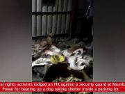Activists file FIR against guard who beat up dog