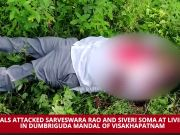 Andhra Pradesh: Naxals kill MLA, ex-MLA in daring attack