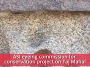 ASI faces heat as ongoing preservation at TN's Mamallapuram prove ineffective