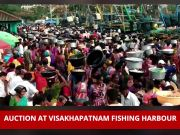 Auction held for fishes at Visakhapatnam Fishing Harbour