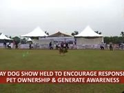 Bhubaneswar: Pet lovers showcase 400 dogs at championship show