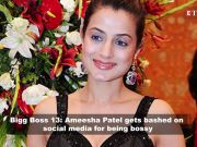 Bigg Boss 13: Ameesha Patel gets brutally trolled for her bossy 'Malkin avatar'