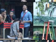 Bigg Boss Halla Bol - Final Task 'Aakhri Seedi'