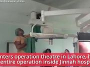 Cat holds up an entire operation in Pak hospital
